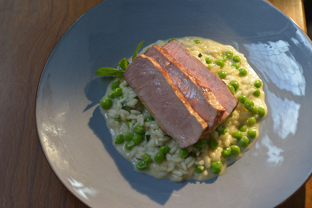 Pea Risotto and Lamb Fillet