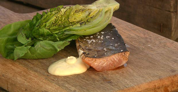 Brown trout, Gem lettuce  & oyster mayonnaise